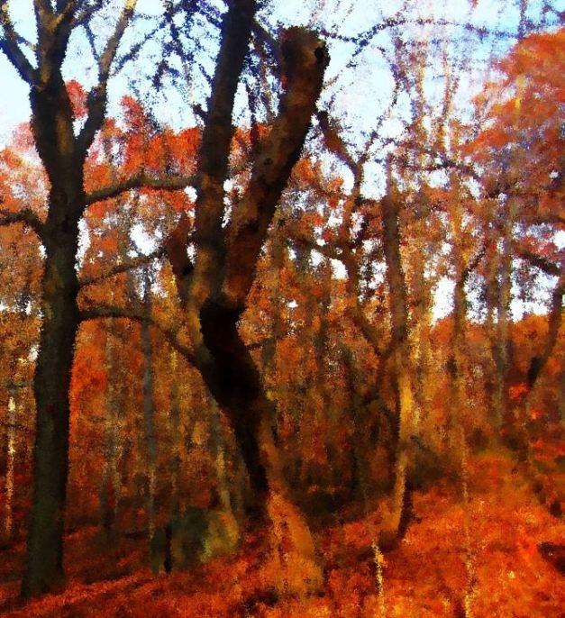 forest15eee