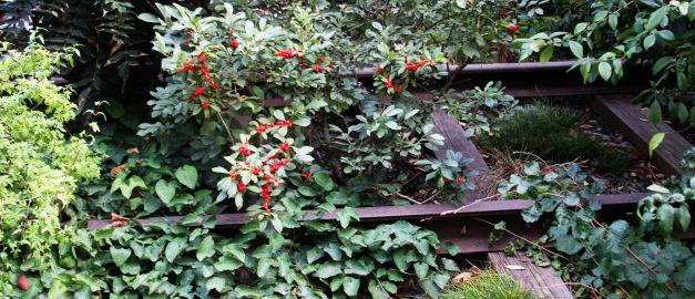 The High Line Park – New York