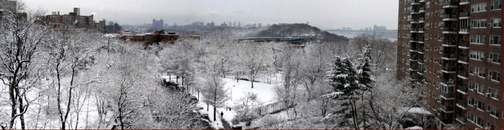 NY Winter panorama
